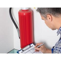 Revisión Anual Extintores CO2